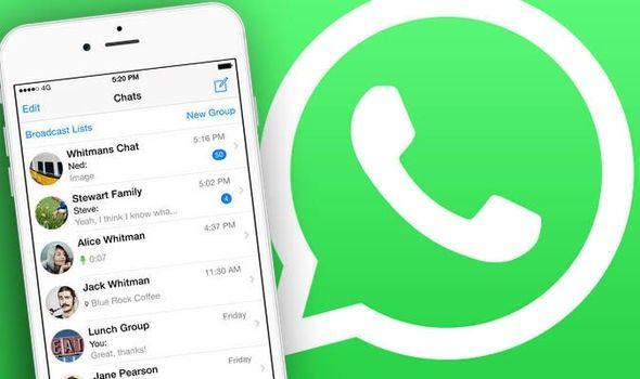 Cara membersihkan file sampah dan menghemat ruang penyimpanan di WhatsApp