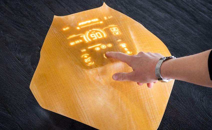 Akan Jadi Layar Ponsel Masa Depan, Kayu Transparan Dinilai Lebih Baik dari Bahan Kaca